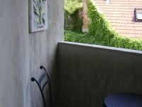 Ajtonyi Rita lakberendező belsőépítész referencia fotói | Mediterrán kislakás - Mediterrán terasz